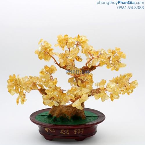 Cây Tài Lộc Thạch Anh Vàng